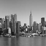 bsl New York